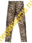 Бриджи Б-1463, кулирка с лайкрой,  р.р 116-140 (5 шт/уп) Леопард*****