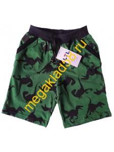 Бриджи Б-0168, кулирка, LTL, р-р 110-134 (5 шт/уп) Динозавр/темно-зеленый